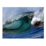 Beautiful afternoon, Hawaiian curl Postcard