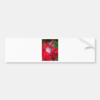 Beautiful Alien Crimson.jpg Bumper Sticker