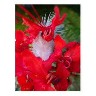 Beautiful Alien Crimson.jpg Postcard