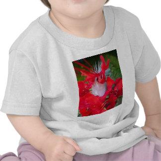 Beautiful Alien Crimson.jpg T Shirt