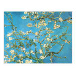 Beautiful almond blossom antique painting post card