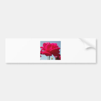 Beautiful Amazing Hakuna Matata Rose For the Bride Car Bumper Sticker