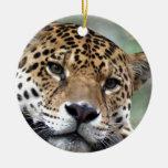 Beautiful Amazon jaguar Christmas Tree Ornaments