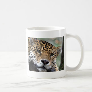 Beautiful Amazon jaguar Coffee Mug