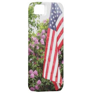 Beautiful American flag Phone case