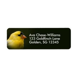 Beautiful American Goldfinch Label