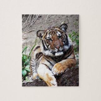 Beautiful and Majestic Bengal Tiger Custom Jigsaw Puzzle