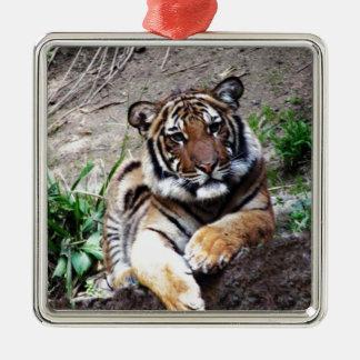 Beautiful and Majestic Bengal Tiger Custom Metal Ornament