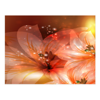 Beautiful and Orange Flowers Postcard