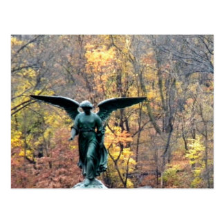 Beautiful angel in autumn woodlands   postcard
