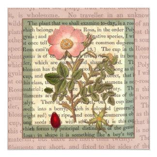 Beautiful Antique Rose Garden Party Vintage Card