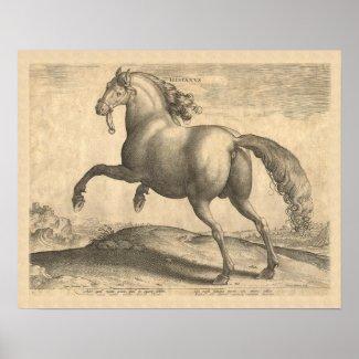 Beautiful Antique Spanish Stallion Elegant