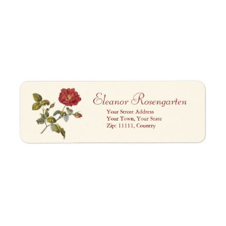 Beautiful Antique Wild Red French Rose Label