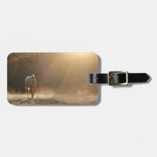 Beautiful Appaloosa and Golden Light Luggage Tag