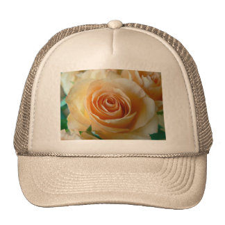 Beautiful Apricot  Rose Trucker Hat