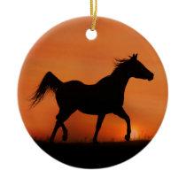 Beautiful Arabian Horse Ornament