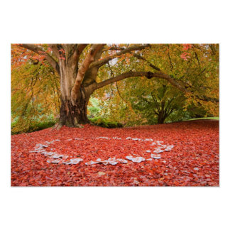 Beautiful Autumn Fall Nature Fairy Ring Poster