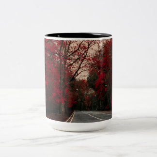 Beautiful Autumn Landscape in Central Park NYC Two-Tone Coffee Mug