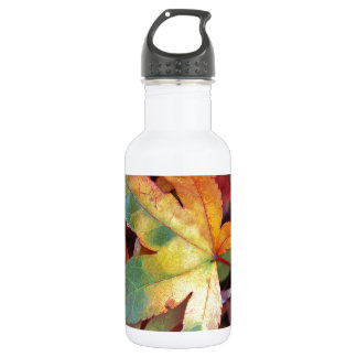 Beautiful autumn leaves print stainless steel water bottle
