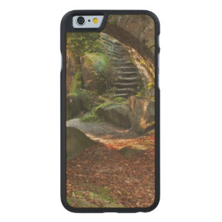 Beautiful Autumn Scene Carved Maple iPhone 6 Slim Case
