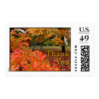Beautiful Autumn Thank, You Postage Stamps