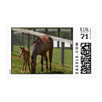 Beautiful Bably Postage