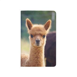 Beautiful Baby Alpaca Pocket Journal