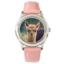 Beautiful Baby Alpaca Watch