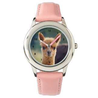 Beautiful Baby Alpaca Watch