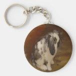 Beautiful Baby Lop Eared Rabbit/Kit Basic Round Button Keychain