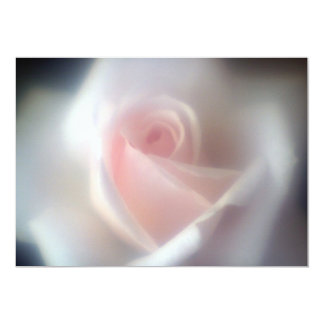 "Beautiful Baby Pink Rose Invitation 5"" X 7"" Invitation Card"