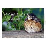 Beautiful Baby Robin Greeting Cards