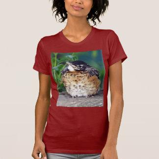 Beautiful Baby Robin Shirt