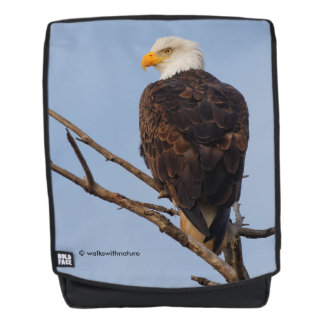 Beautiful Bald Eagle in a Tree Backpack