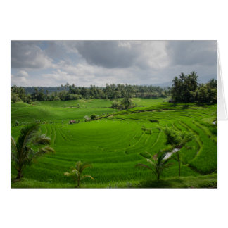 Beautiful Bali Countryside Card