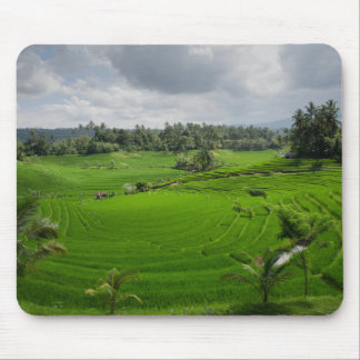 Beautiful Bali Countryside Mouse Pad