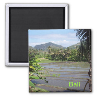 Beautiful Bali rice paddies Fridge Magnet