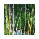 Beautiful bamboo grove green yellow and gray canvas print