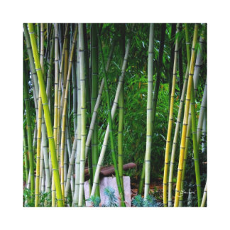 Beautiful bamboo grove green yellow and gray canvas print
