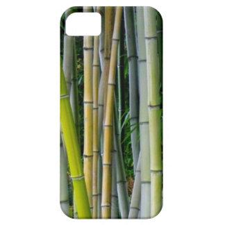 Beautiful bamboo grove iPhone SE/5/5s case