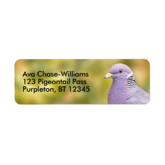 Beautiful Band-Tailed Pigeon in My Backyard Label