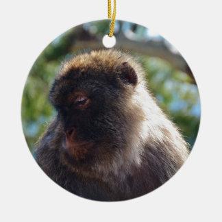 Beautiful Barbary Ape Christmas Tree Ornament