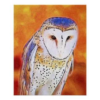Beautiful Barn Owl Bird With White Face Poster