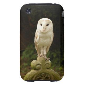 Beautiful Barn Owl Iphone 3G/3GS Case-Mate Tough Tough iPhone 3 Cover