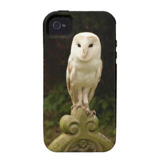 Beautiful Barn Owl iPhone 4 Case Mate Tough
