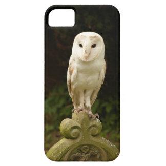 Beautiful Barn Owl iPhone 5 Case Mate