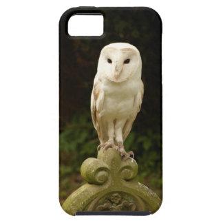 Beautiful Barn Owl iPhone 5 Case Mate Tough
