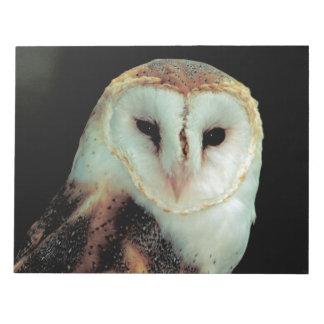 Beautiful barn owl portrait notepad