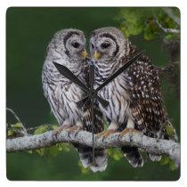 Beautiful Barred Owls Wildlife Wall Clock