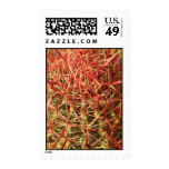 Beautiful Barrel Cactus (1) Postage Stamps